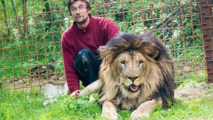 Idiot and Lion